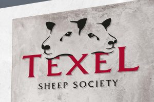 Texel Sheep Society logo branding Howard Adair